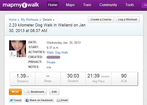 MapMyWalk Stats