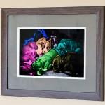 Framed Print – Pop Art Pups