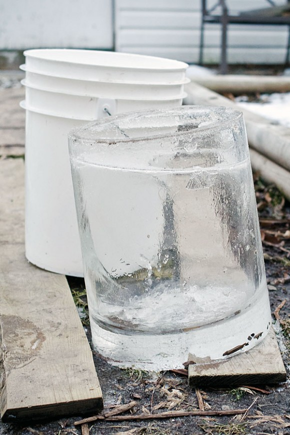 clean ice bucket