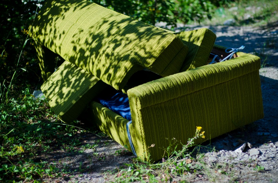 green pull out couch