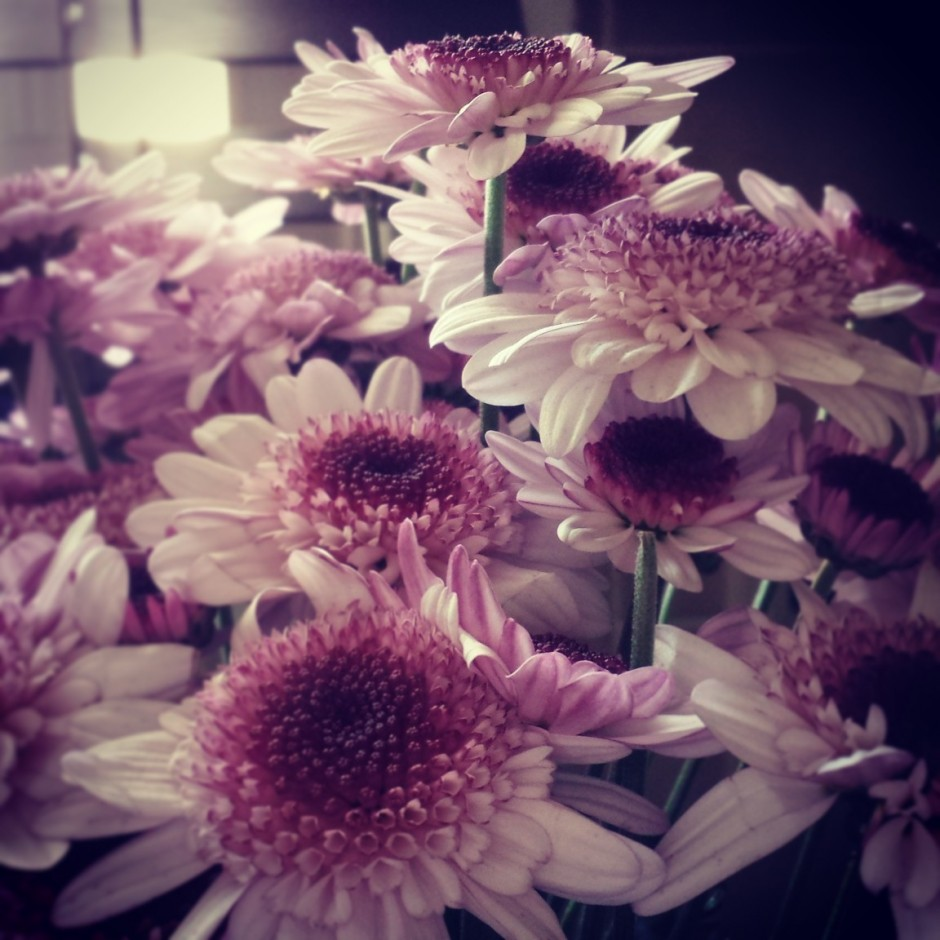 flowers instagram