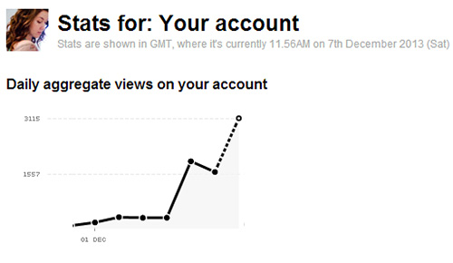 flickr viewer stats