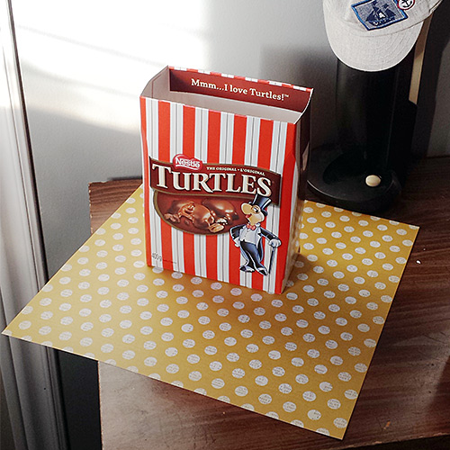 turtles box and craft paper DIY