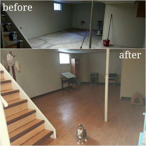 Vinyl plank basement floor