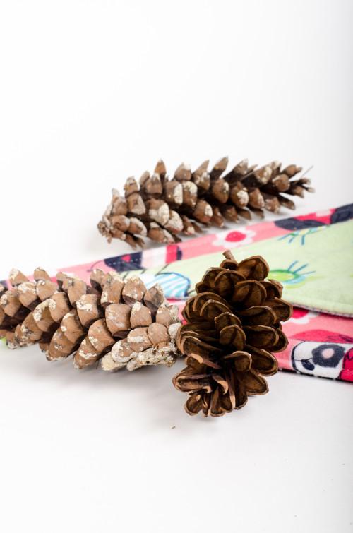 Gift-ready bandana bibs