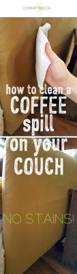 remove coffee from couch