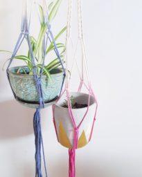 ombre plant hangers